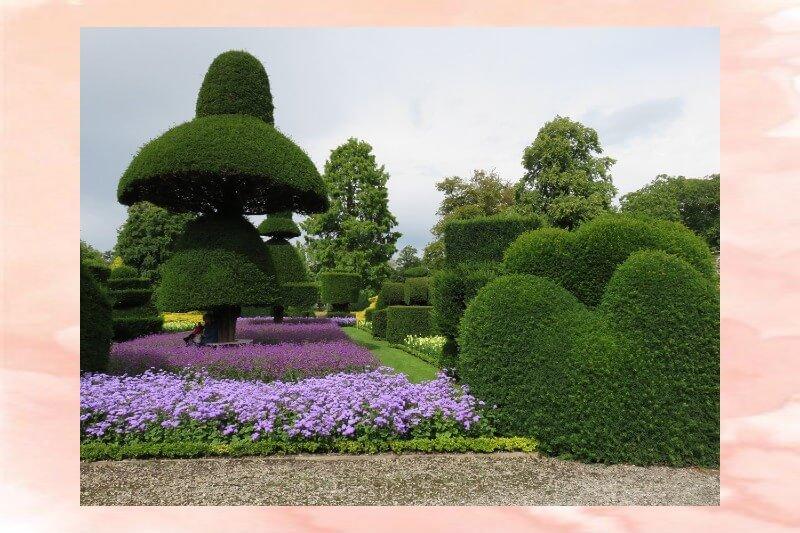 Giardino realizzato con arte topiaria