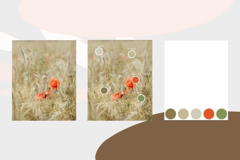 Creare palette colori